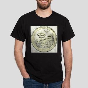 Illinois Quarter Basic 2016 T-Shirt