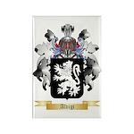 Alvigi Rectangle Magnet (100 pack)