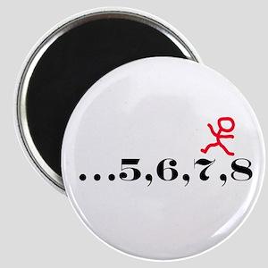 5,6,7,8 Magnet