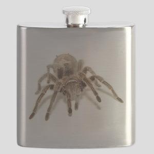 Tarantula Flask