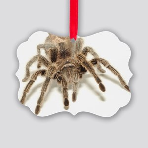 Tarantula Picture Ornament