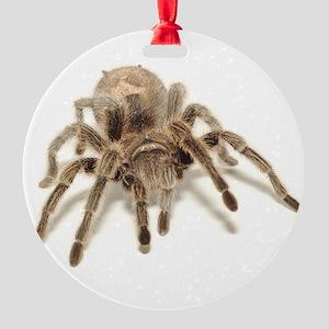 Tarantula Round Ornament