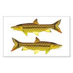 Golden Mahseer Sticker (Rectangle 10 pk)