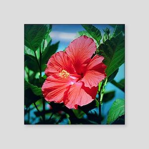 "Caribbean flower Square Sticker 3"" x 3"""