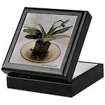 Lady Slipper Orchid Art Keepsake Box