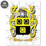Ambrosio Puzzle