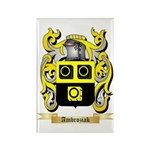 Ambroziak Rectangle Magnet (100 pack)