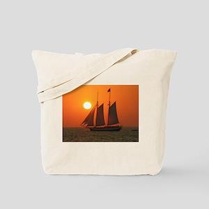 DSCN4217 Tote Bag
