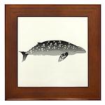 Gray Whale Framed Tile
