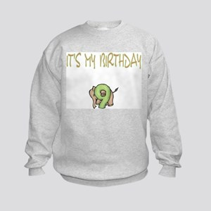 It's My Birthday 9 Kids Sweatshirt