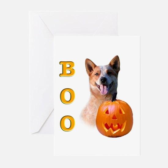 Halloween ACD Boo Greeting Cards (Pk of 10)