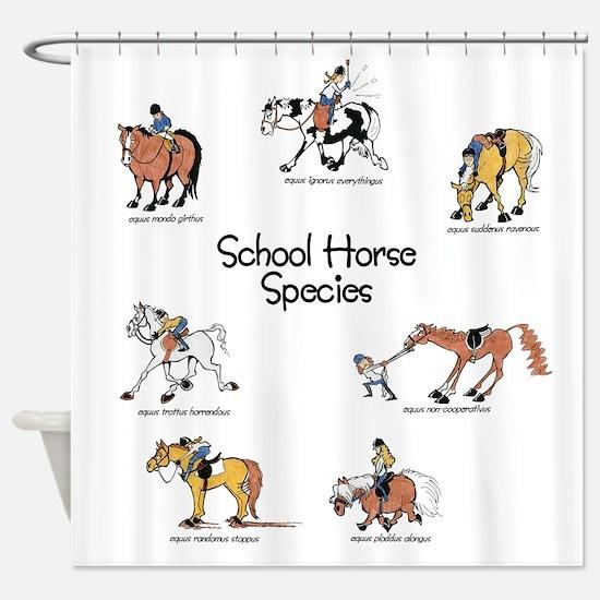 School Horse Species Shower Curtain