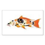 Koi carp Sticker (Rectangle 10 pk)