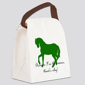 trainergreen Canvas Lunch Bag