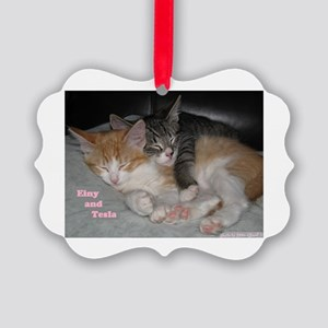 Einy and Tesla Showin' the Love Picture Ornament