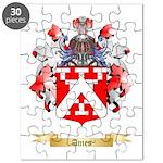 Ames Puzzle