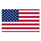 Usa flag Single
