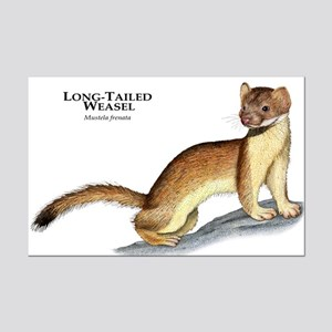 Long-Tailed Weasel Mini Poster Print