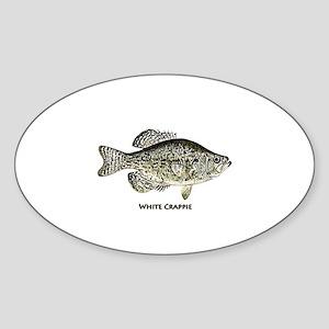 White Crappie Logo Sticker (Oval)