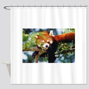 File1071 Shower Curtain