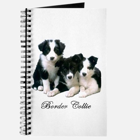 Border Collie Puppies Journal