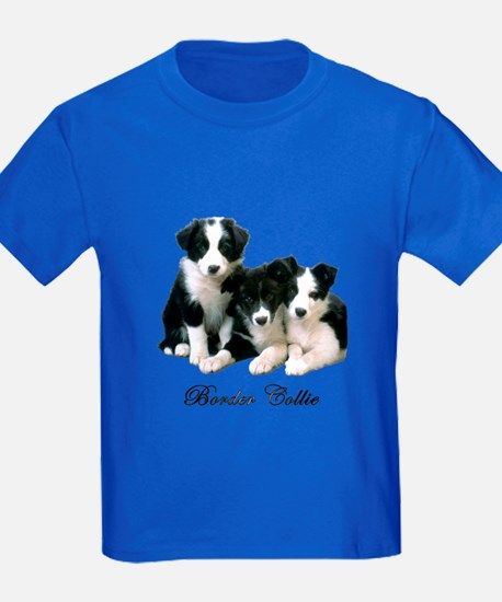Border Collie Puppies T