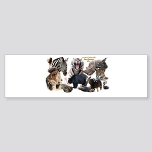 SA Zoo Bumper Sticker