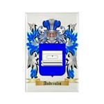 Andriulis Rectangle Magnet (100 pack)
