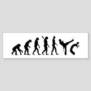 Evolution Capoeira Sticker (Bumper)