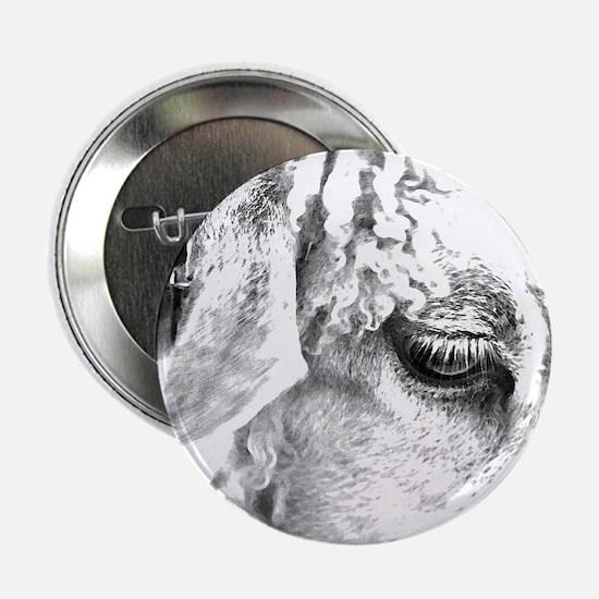 """Sheep Eye 1S 2.25"""" Button"""