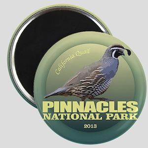 Pinnacles NP Magnets