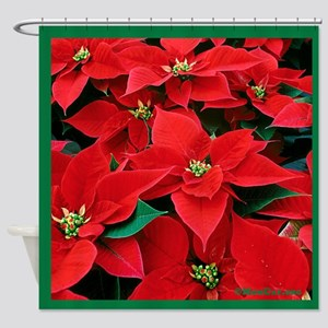 Christmas Poinsettias (green bord) Shower Curtain