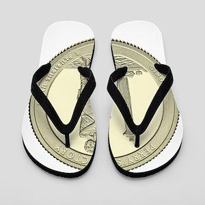 Ohio Quarter 2013 Basic Flip Flops