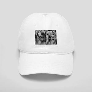Elephant Reflections Cap