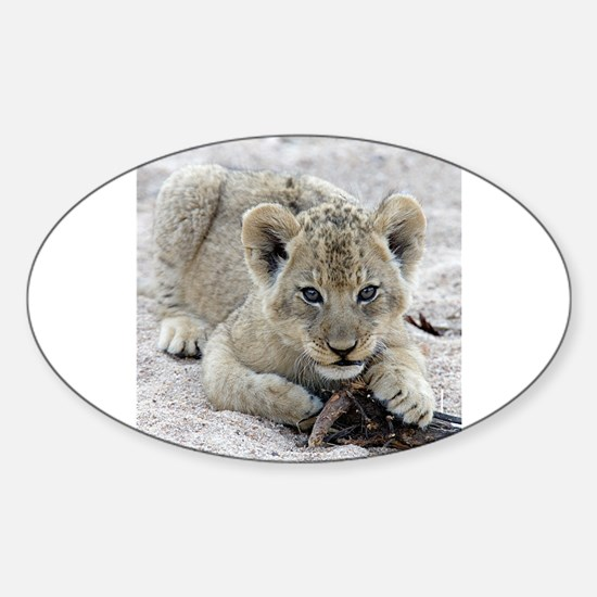 This Is MY Stick Sticker (Oval)