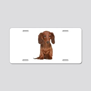Painted Long Haired Red Aluminum License Plate