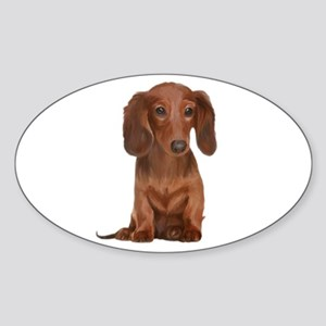 Painted Long Haired Red Sticker (Oval)