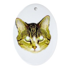 I LOVE MY CAT Oval Ornament