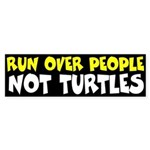 Turtle Bumper Sticker