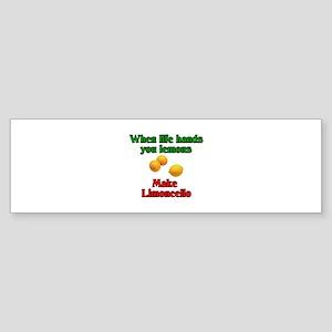When Life Hands You Lemons Bumper Sticker