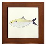 Menhaden Bunker fish Framed Tile