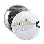 Menhaden Bunker fish 2.25