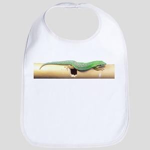 Green Gecko Bib