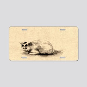 Domestic Cat Japanese Ink Drawing Aluminum License