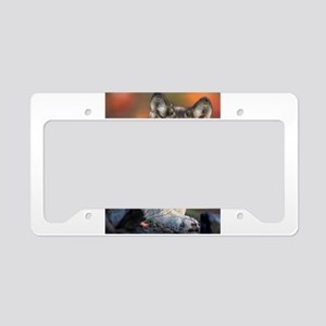 Awesome Gray Wolf License Plate Holder