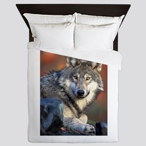 Awesome Gray Wolf Queen Duvet