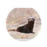 Honey badger 100 Pack