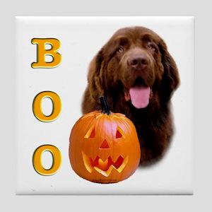 Halloween Brown Newfoundland Boo Tile Coaster
