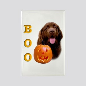 Halloween Brown Newfoundland Boo Rectangle Magnet