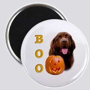 Halloween Brown Newfoundland Boo Magnet